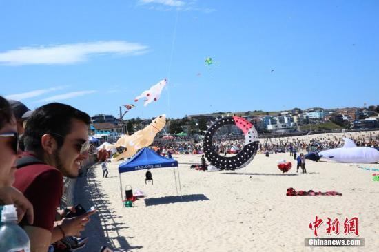 材料图?海滩。 a target='_blank' href='http://www.chinanews.com/'种孤社/a记者 陶社兰 摄