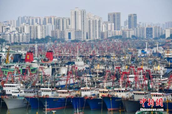 航拍在海口新海港码头,密密麻麻靠岸停泊的船只。 骆云飞 摄