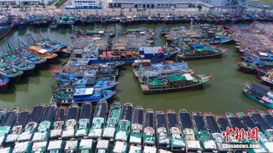 9月15日,海南三亚崖州中心渔港停靠着众多回港避风的渔船。<a target='_blank' href='http://www.chinanews.com/'>中新社</a>记者 骆云飞 摄