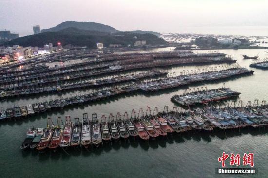原料图:港口。中新社记者 陈骥旻 摄