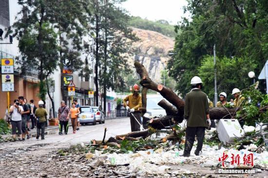 9月17日上午,在强台风山竹吹袭期间水浸严重的杏花�,工人正加紧清理积在路中心的树枝和杂物,并移除倒塌的大树。中新社记者 麦尚�F 摄