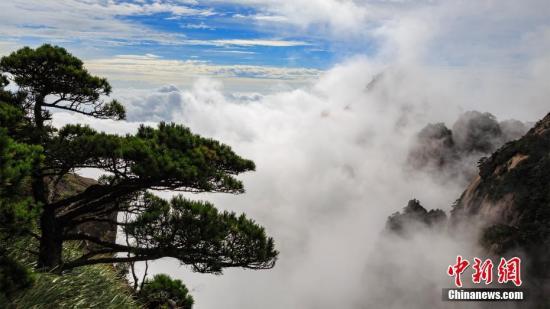资料图:秋雨洗礼后的安徽黄山风景区雾气缭绕,秋风清爽。 叶永清 摄