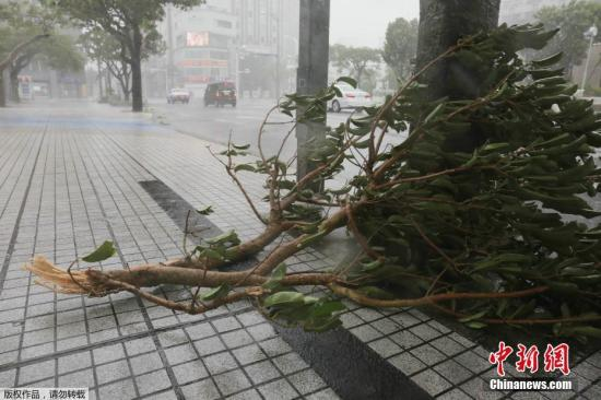 """台风""""灿鸿""""逼近日本 本"""