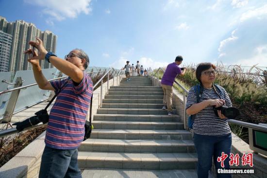 资料图:香港西九龙高铁站。<a target='_blank' href='http://www.chinanews.com/'>中新社</a>记者 张炜 摄