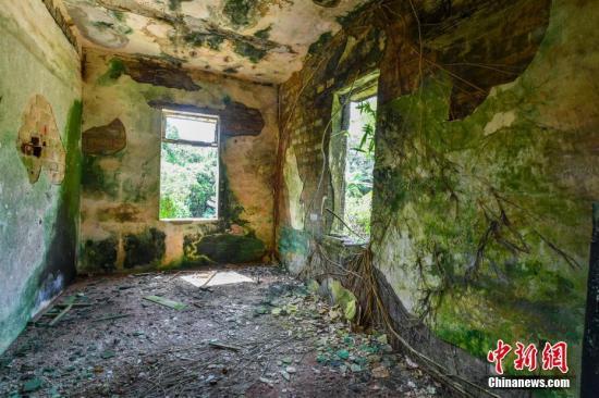 图为林鸿高围楼的房间内由于长期没有人居住已经长满绿藻霉斑。骆云飞 摄