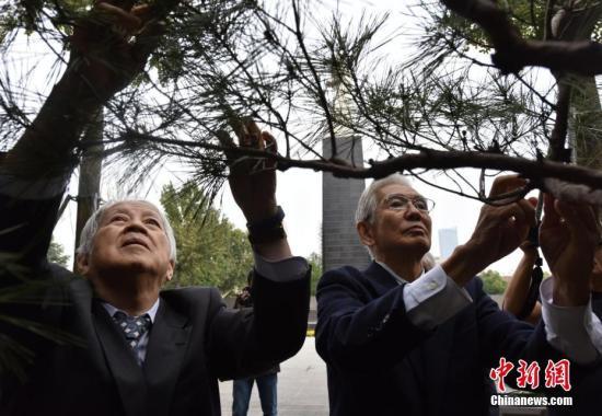 10月8日,日本日中协会植树访华团第33次来到南京,悼念南京大屠杀遇难者。旅日华侨林伯耀参加植树活动。刘俊义 摄