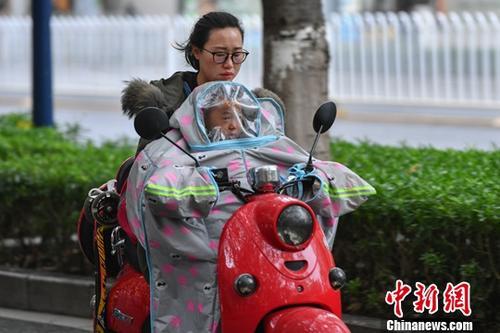 资料图。<a target='_blank' href='http://www-chinanews-com.nbhua.net/'>中新社</a>记者 任东 摄