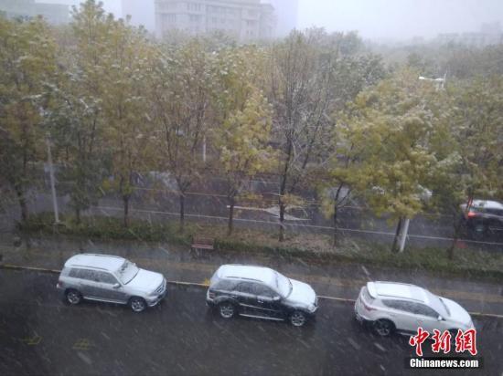 新疆伊犁州、博州出现降雪天气,当地气温骤降。朱景朝 摄