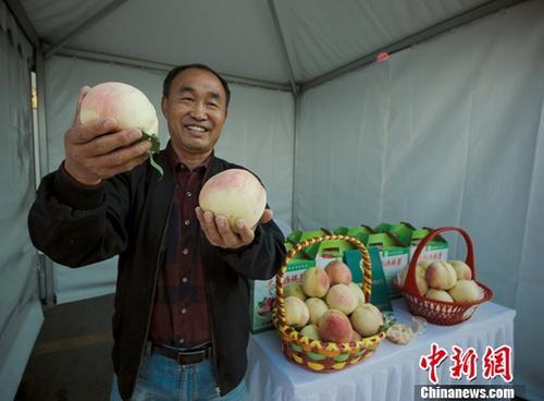 宁夏贫困地区农产品北京产销会举办