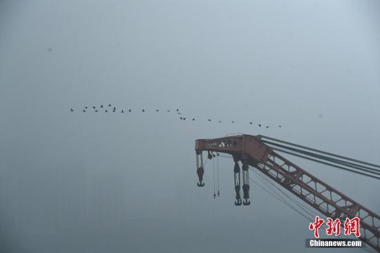 """10月31日,重慶萬州墜江公交車救援工作持續進行,自航全回轉浮吊船""""長江救撈二號""""的掛鉤進入水中,已經做好起吊準備。圖為大雁飛過等待救援的浮吊船。陳超 攝"""