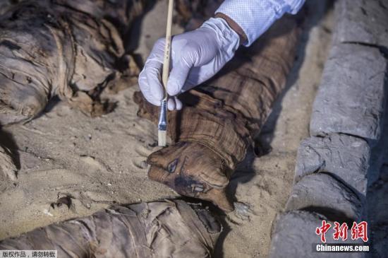 """古埃及人还将猫等动物制作成木乃伊 ,考古学家曾在尼罗河畔一座神庙里发现30万个""""猫木乃伊"""",这些动物木乃伊用的材料和工序几乎和人木乃伊完全相同。"""