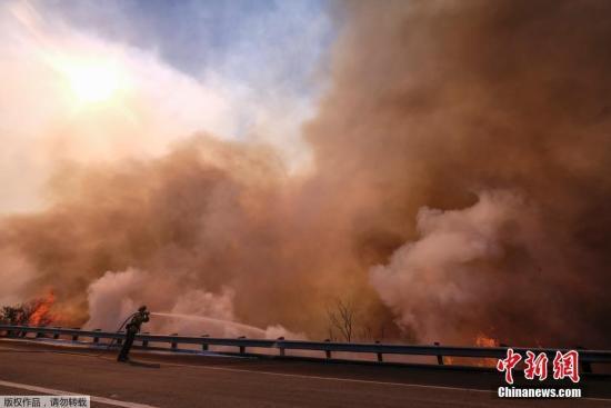 资料图:美国南加州山火。