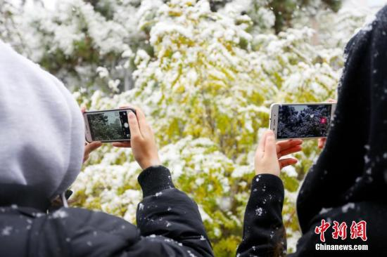 11月14日,甘肃省兰州迎来降雪,顶风冒雪的市民在路边拍照、玩雪。图为市民拍摄雪景。高展 摄