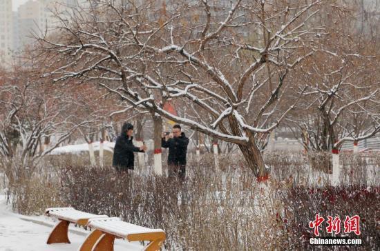 11月16日,市民为雪景拍照留念。除海西西部外,青海省其余各地从11月15日夜间开始均陆续出现降雪。此次降雪范围广,量级大,对各地交通带来较大影响。