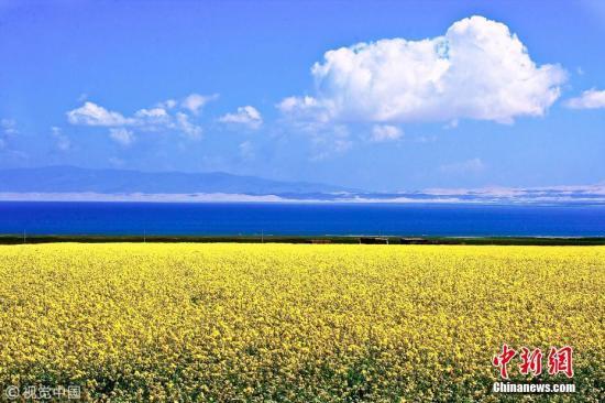 青海湖。图片来源:视觉中国