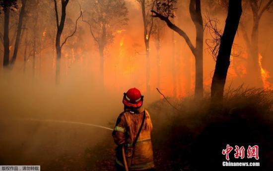 资料图片:由于高温干燥等原因,澳大利亚山火频发。