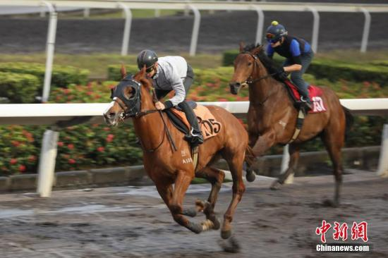 China won't backtrack on horse-racing in Hainan