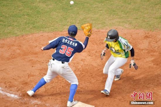 资料图:学生棒球赛事。记者 陈文 摄