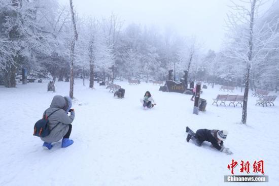 图为游客在雪中嬉戏。刘金文 摄