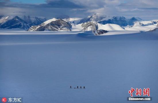 全球变暖致南极磷虾南迁愈发不适宜繁殖