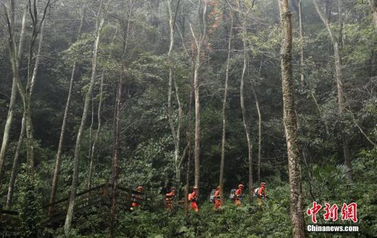 资料图:林间巡护的森林消防员。程雪力 摄