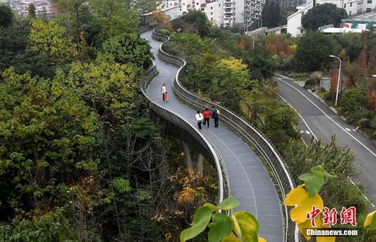 前三季度中国林业产业总产值达5.13万亿元
