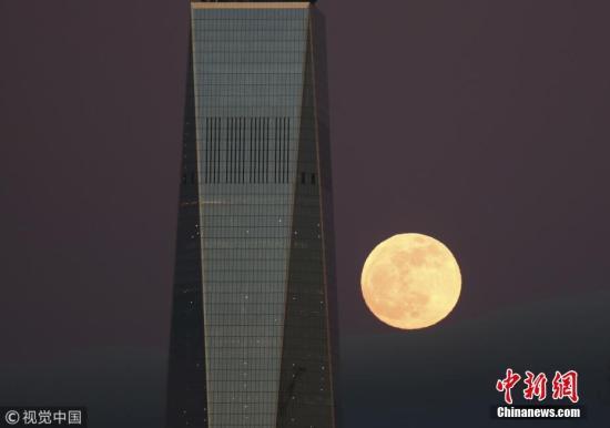 """当地时间2019年1月21日,欧美各地上演""""超级月亮"""",场面壮观。""""超级月亮""""是指处于近地点位置附近的满月,这时候的月亮看起来比它处于远地点时要更大、更亮。图为美国泽西市上演""""超级月亮""""。图片来源:视觉中国"""