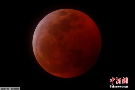 """美国东部时间1月20日晚(北京时间21日上午),美洲、欧洲和非洲部分地区迎来2019年唯一一次月全食。由于诸多因素结合,当晚的月亮是一轮""""超级血狼月""""。根据美国老农年鉴,1月的满月被称为""""狼月""""。因此,观星者称20日当晚的月亮是""""超级血狼月""""。图为在美国加利福尼亚观测到的""""超级血狼月""""。"""