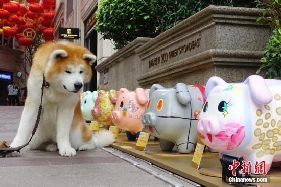 俄羅斯遠東一家銀行前小狗雕像被偷 警方正調查中