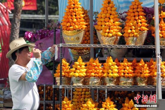 资料图:花市上的摊主们忙于整理花卉。<a target='_blank' href='http://www-chinanews-com.woxingwosu520.com/'>中新社</a>记者 洪少葵 摄
