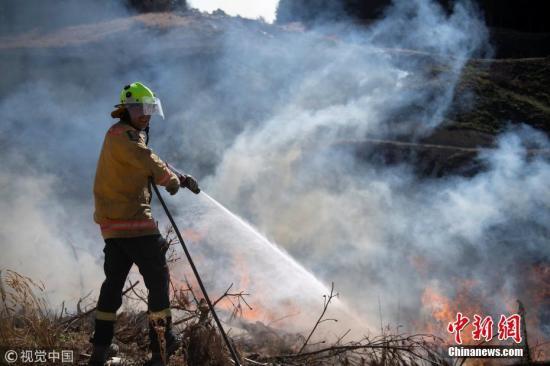 时隔16天新西兰森林大火最后一批灾民获准回家