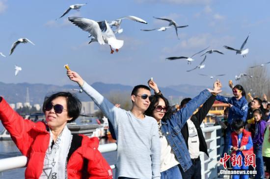 """中国出现四大""""新年俗"""" 专家:科技发展影响春节"""