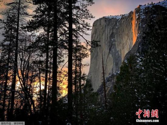 """当地时间2月18日,位于美国加州约塞米特国家公园的马蹄铁瀑布在阳光下倾泻而下,远远望去被阳光映红的水流化作一条""""火瀑布""""悬挂山间。"""