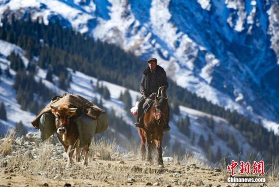 """随着天气逐步转暖,新疆昭苏牧民开启了一年一度的春季转场之路,30余万头牲畜、100余公里路程、30余天转场时间……牧民们要从昭苏南部的阿合牙孜沟深处的""""冬窝子""""到山下牧场,壮观的千军万马、弥漫的硝烟浮尘、有条不紊的行进、此起彼伏的呼喊,形成一幅震撼而绝美的画卷。文/赵云 图/秦杰"""