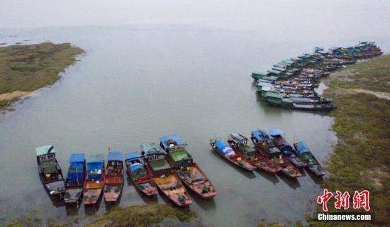 近期受連續降雨影響,江西主要河流水位上漲,中國第一大淡湖鄱陽湖水位快速上漲,湖面較前期明顯擴大。截止2月23日14時,鄱陽湖都昌站水位為12.56米,較往年提前半個多月結束枯水期,進入中水位。圖為大批漁船??吭诮髹蛾柡疾?。傅建斌 攝