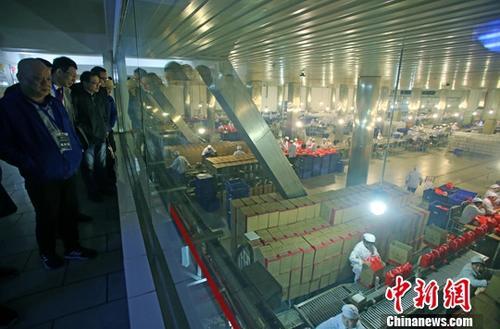 资料图:五粮液集团有限公司车间。中新社记者 王磊 摄