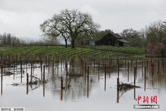当地时间2019年2月27日,美国加州索诺玛县塞瓦斯托波尔,当地遭遇洪水袭击,河流水位暴涨,路面积水成河。
