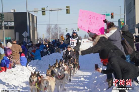 资料图:当地时间2019年3月2日,美国阿拉斯加州安克雷奇(Anchorage),当地举办2019年狗拉雪橇比赛。