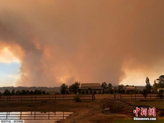 资料图:当地时间3月2日,澳大利亚维多利亚加菲尔德发生森林大火。