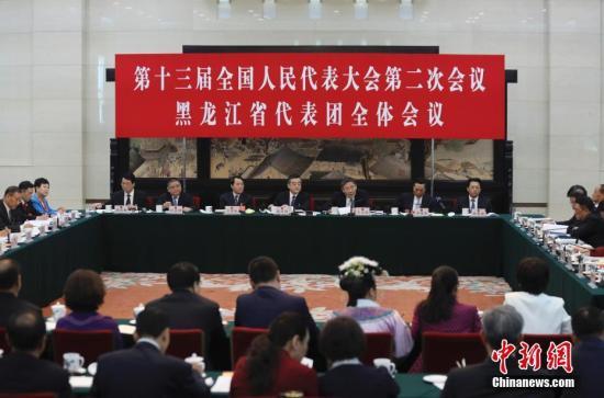 3月7日,十三届全国人大二次会议黑龙江代表团举行全体会议,审议政府工作报告,审查政府计划报告和预算报告,并对中外媒体开放。中新社记者 盛佳鹏 摄
