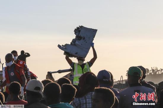 美媒:埃航波音737MAX空难或由鸟类撞击导致