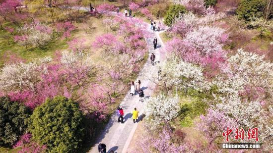 材料图:市平易近正在公园赏花秋。 孟德龙 摄