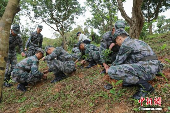 千名解放军驻香港部队官兵参加植树日活动 携手市民绿化香港