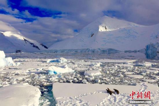 资料图:南极。杜锦恩 摄