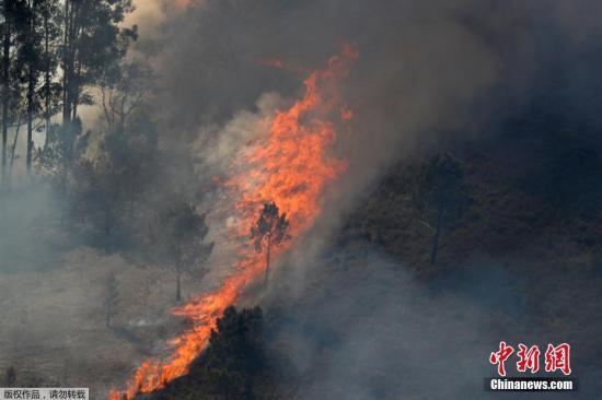 资料图:森林火灾。