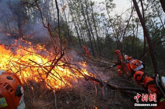 资料图:丛林消防队员全力扑救冕宁腊窝乡腊窝村丛林火警。 李森林 摄