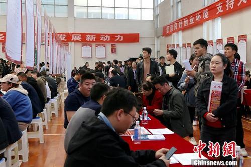 4月12日,大学生在招聘会现场寻找工作岗位。中新社记者 马铭言 摄