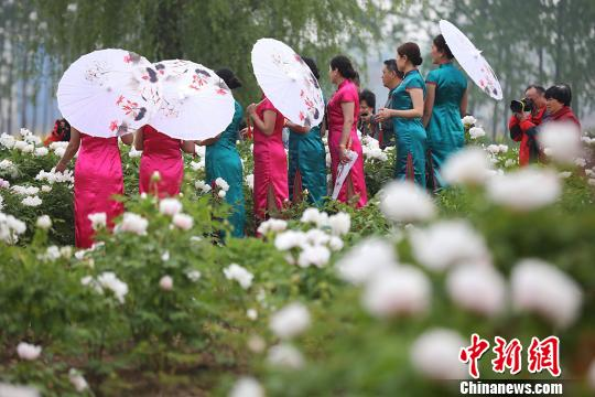 NE Chinese city holds first China Qipao Culture Festival