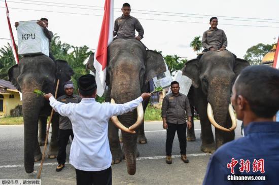 印尼总统选举败选者就选举结果提