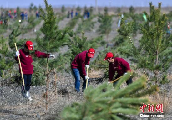 China's land greening in 2020
